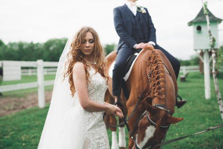 Newly married wedding couple stand with beautiful horse on nature Stock Photo