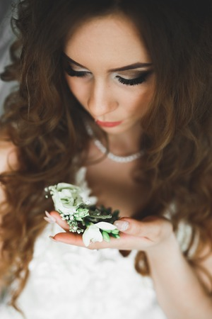 Portrait of beautiful bride with fashion veil at wedding morning. Wedding dress.