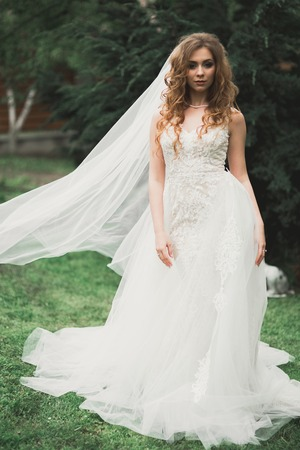 Beautiful luxury bride in elegant white dress