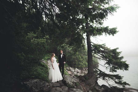 Kissing wedding couple staying over beautiful landscape Imagens