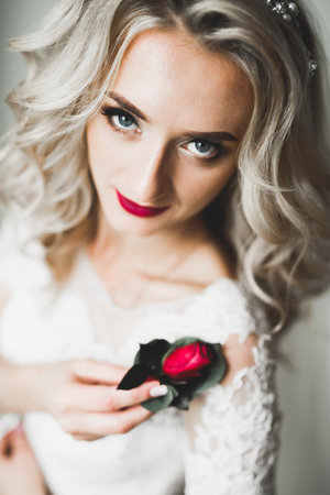 Portrait of a beautiful fashion bride, sweet and sensual. Wedding make up and hair Imagens