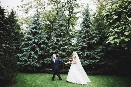 Beautiful romantic wedding couple of newlyweds hugging in park