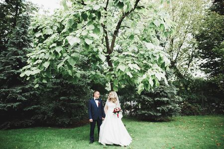 Beautiful romantic wedding couple of newlyweds hugging in park. Banco de Imagens