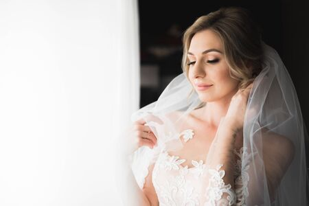 Beauty portrait of bride wearing fashion wedding dress with feathers with luxury delight make-up and hairstyle