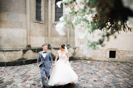 Wedding couple holding hands, groom and bride together on wedding day. Zdjęcie Seryjne