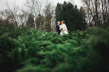 Wedding couple on the nature is hugging each other. Beautiful model girl in white dress. Man in suit. Stock fotó