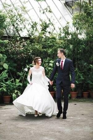 Wedding couple holding hands, groom and bride together on wedding day