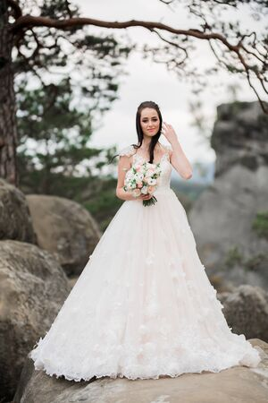 Beautiful bride posing near rocks against background the mountains Imagens