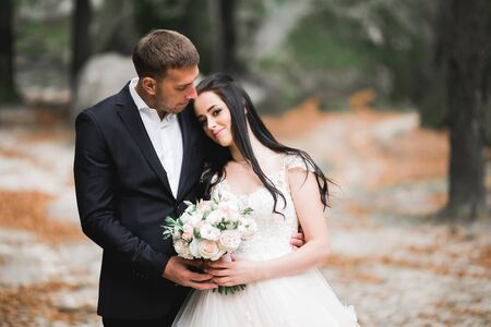 Beautiful romantic wedding couple of newlyweds hugging in park