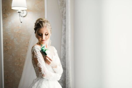 Luxury bride in white dress posing while preparing for the wedding ceremony Imagens
