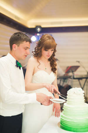 Bride and groom at wedding cutting the wedding cake