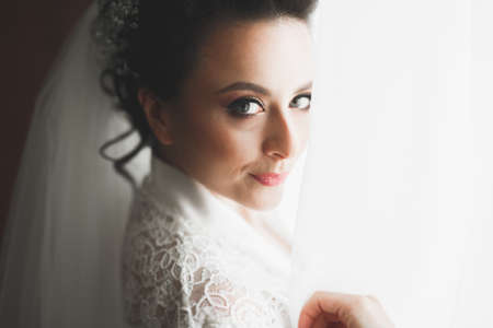 Portrait of a beautiful fashion bride, sweet and sensual. Wedding make up and hair Banque d'images