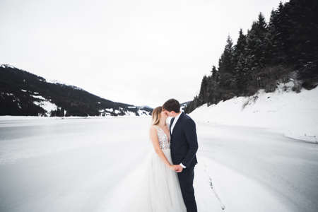 Just married couple kissing, mountains landscape in snow on the background 免版税图像