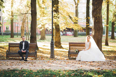 Beautiful young wedding couple sitting on a bench in a park Stock Photo