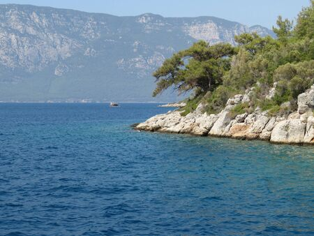Rocky cliff covered with coniferous forest in the Aegean sea Banco de Imagens