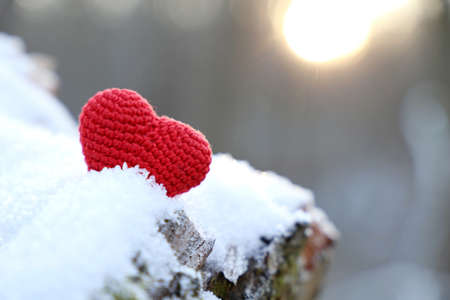 Red knitted heart on a snow in winter forest in sunshine. Background for Christmas holiday, Valentine's card
