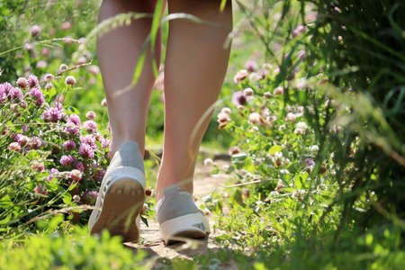 Woman walking on a summer meadow overgrown with clover flowers. Slim female legs on a path, running and vacation on a nature