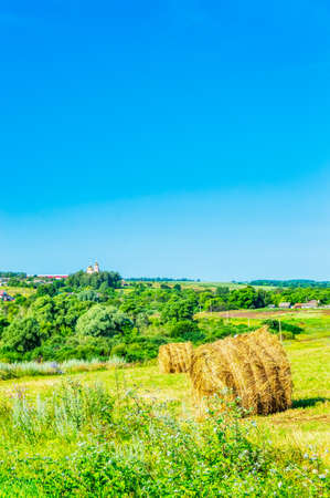 A field of ripe wheat against a blue sky. A path in an agricultural field of ripe grain crops. Harvest. Wheat on the background of the sky with clouds, a field of ripe wheat ears of Golden color. 스톡 콘텐츠