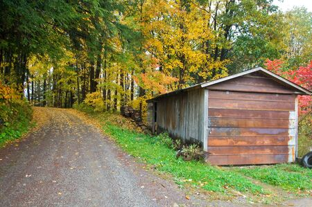 back roads shack in autumn forest photo