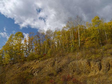 breakage: Un paisaje de oto�o con una madera a la rotura Foto de archivo