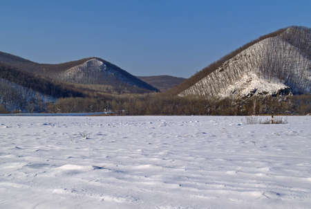 A winter landscape on edge of a meadow  Stock Photo