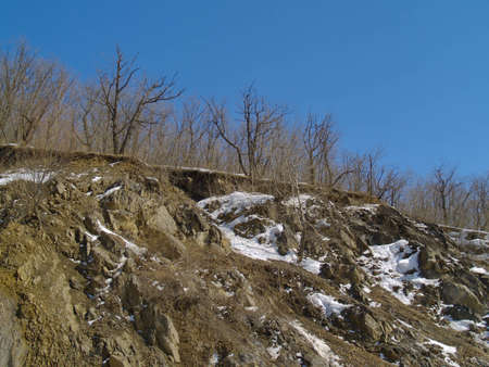breakaway: The Landscape with winter wood on rocky breakaway