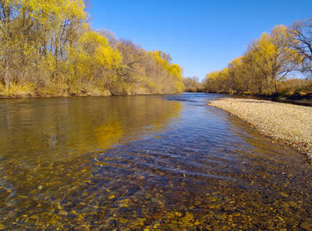 Autumn landscape on river bank in a sunny day    Stock Photo
