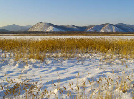 the far east: Winter evening in a river Ussuri valley, the Far East, Russia