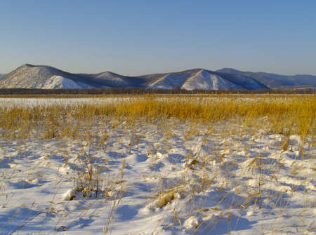 ussuri: Winter evening in a river Ussuri valley, the Far East, Russia