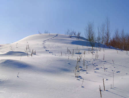 The hare trace going down from a snow-covered hill photo