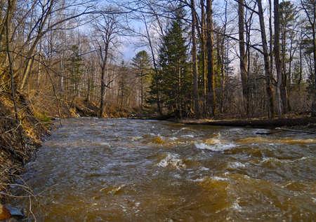taiga: Spring high water on a taiga stream Stock Photo