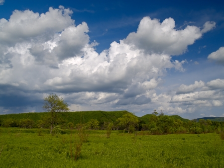 Summer landscape with a green meadow and the cloudy sky Stock Photo