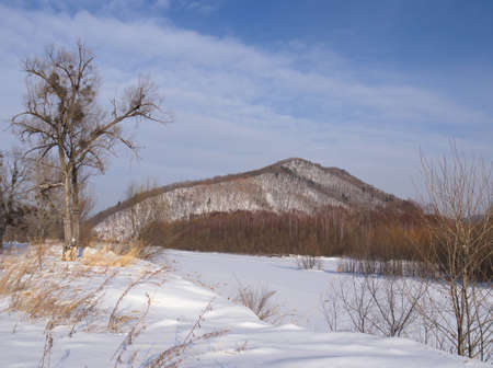 Winter landscape on the bank of the snow-covered winter river