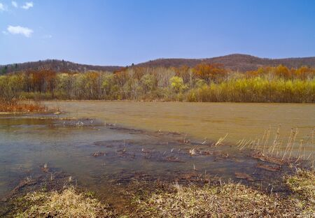 Landscape - a spring sunny day on river bank Stock Photo