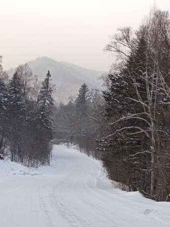 Winter cloudy day on descent of taiga road photo