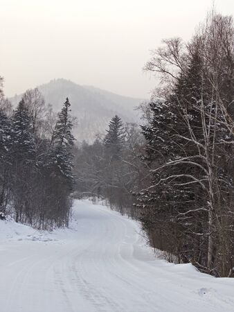 Winter cloudy day on descent of taiga road Stock Photo