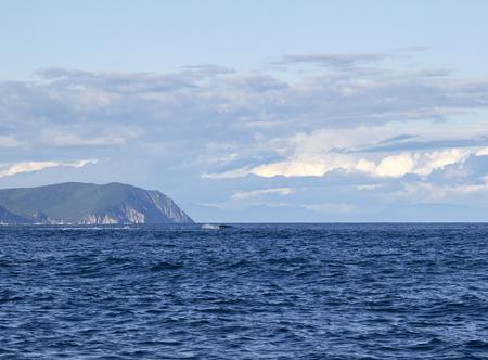 Sea landscape Russia Yayaponsky sea