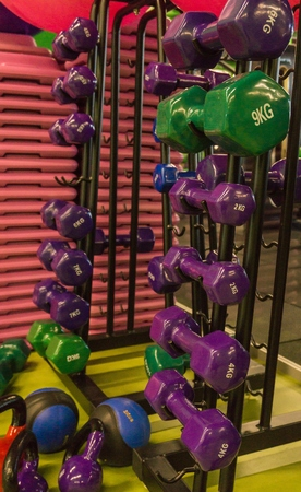 Colored dumbbells in the gym