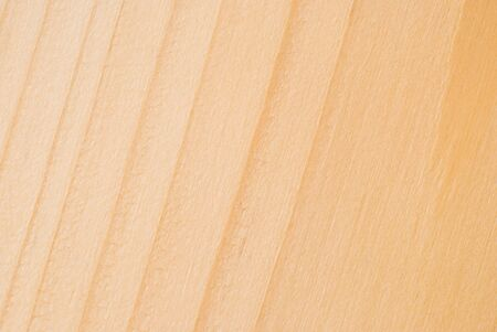 Light, natural wood texture, fibers and structure