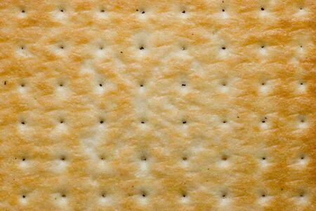 Texture, background from a large salty cracker, closeup