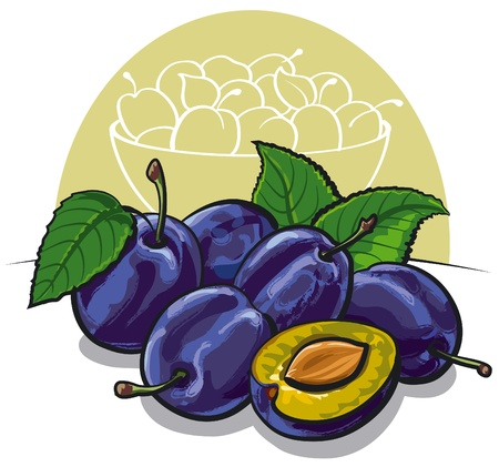 ripe plums Stock Vector - 15138295