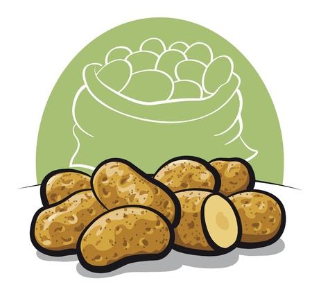 potato: raw potato