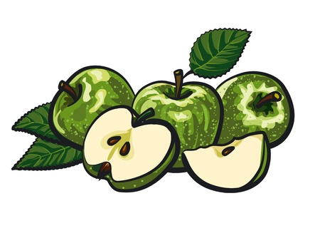 green apples Stock Vector - 17680707