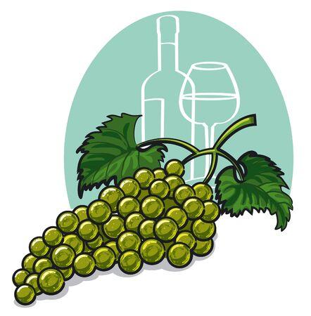 isabella: Ripe white grapes Illustration