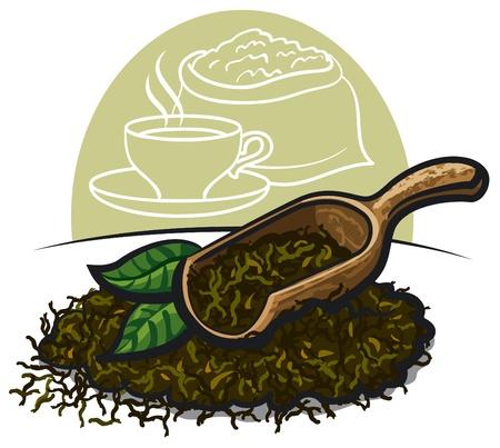 tannin: Dry green tea leaves
