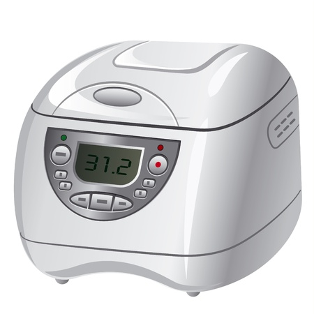 cooker: multicooker