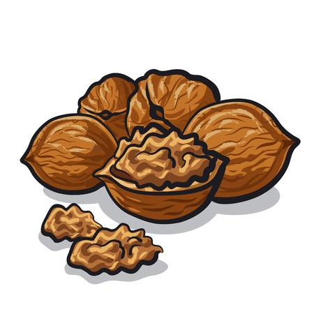 nutty: group of walnuts