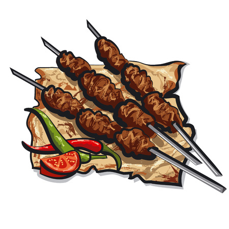 grilled kebab with pita bread