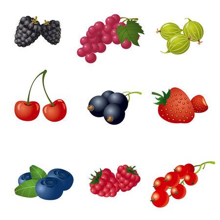 berries icon set Illusztráció