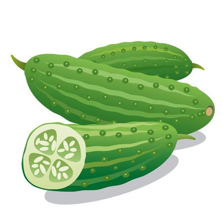 cucumbers: cucumbers Illustration